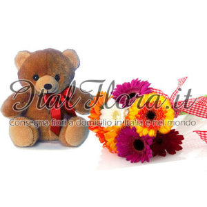 Bouquet di gerbere con peluche