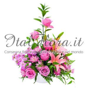 Composizione rosa