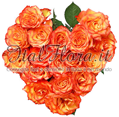 Cuore arancio