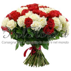 Rose rosse e bianche