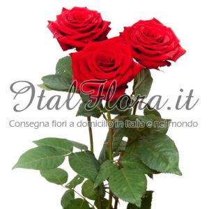 Spedire Fiori Nel Mondo.Consegna Fiori A Domicilio In Italia E Nel Mondo Italflora
